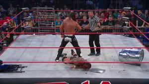 Nalyse TNA Sacrifice 2014 9
