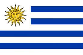 Mondial 2014 Drapeau Uruguay