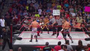 Nalyse TNA SlammiVersary 2014 5
