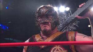 Nalyse TNA SlammiVersary 2014 7