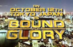 """Alors c'est le show de l""""année, et il se déroule au Japon, ça vous suffit comme pub ?"""