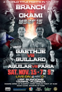 15112014 Review Affiche WSOF 15