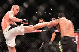 UFC 190 Nogueira vs Struve 3