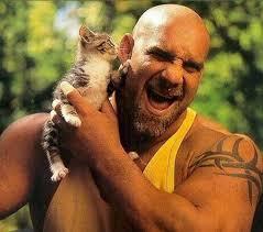 Vous auriez préféré voir jobber tout le roster WWF ?